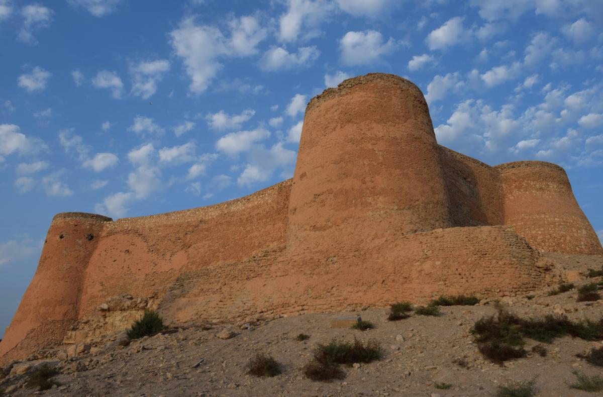 قلعة تاروت .. معلم أثار اهتمام أهل المنطقة وكثير من علماء الآثار